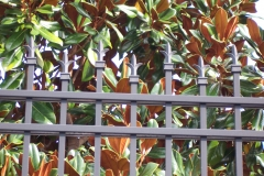 3354_alum fence with tri-finials #3