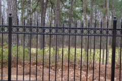 9569_arched alum fence with quad finials  & circles #1